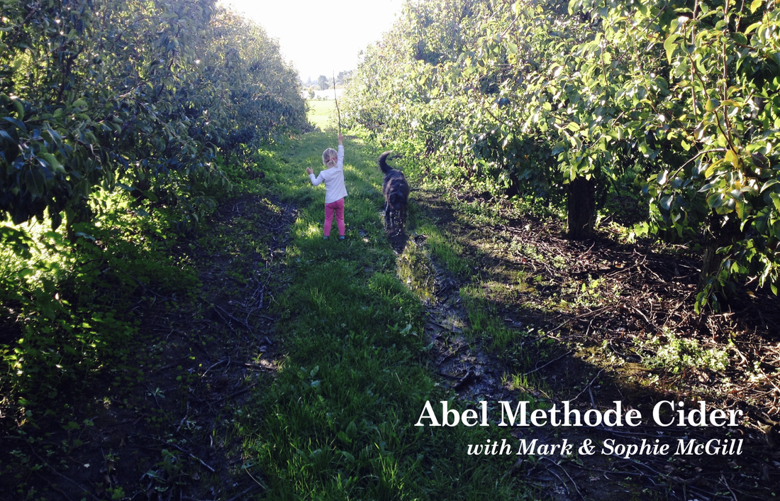 Abel Methode Cider w/ Mark & Sophie McGill